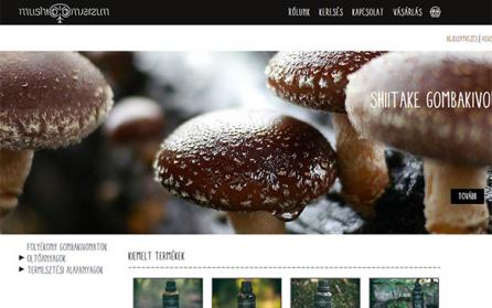 mushroomverzum.com